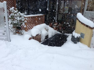 融雪マット 雪の日