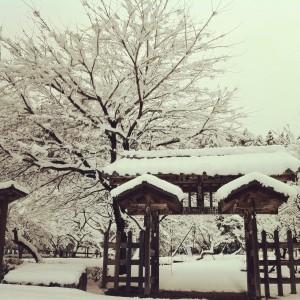 雪と和風門