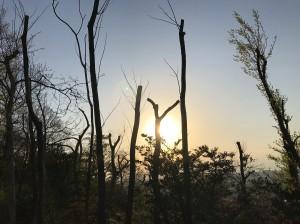 富山 sunrise
