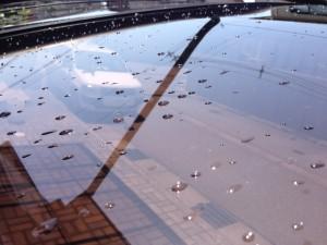 ポリカーボネート屋根の新品