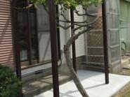 ガーデンフェンスとパーゴラ 富山市