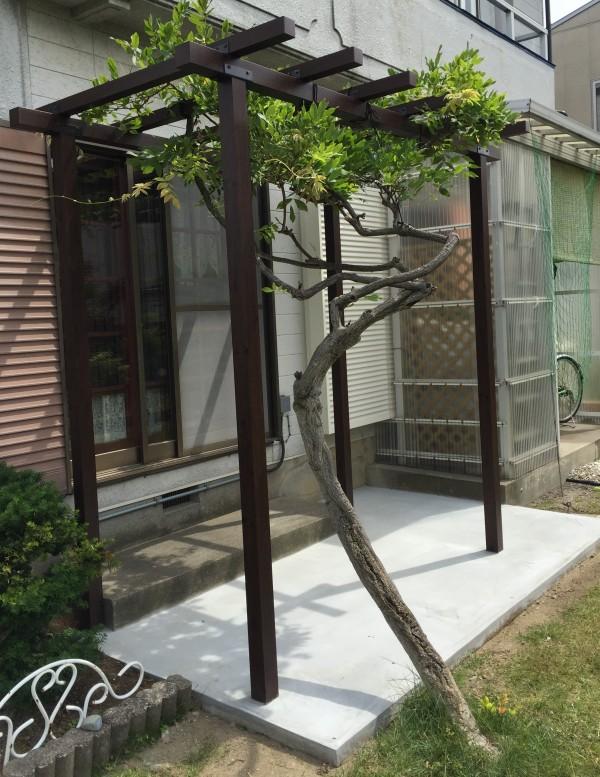 ガーデンフェンスとパーゴラ 富山市1