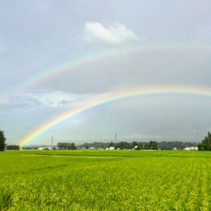 富山市 虹