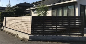 シマトネリコと板塀とライムストーン2