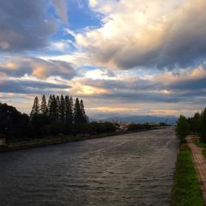 メタセコイアと雲 富山