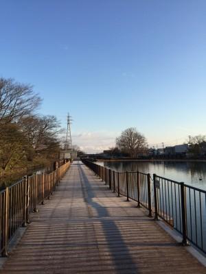 富岩運河 散歩道