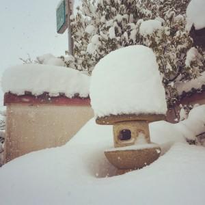 雪が少ないので工事ができる~って勘違いしてしまいます。
