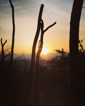 sunrise toyama