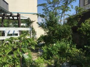 アイボリー色の板塀 ガーデニングフェンス 富山市6