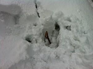 雪庇にはまった
