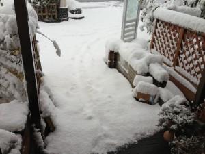 融雪マットなし 展示場