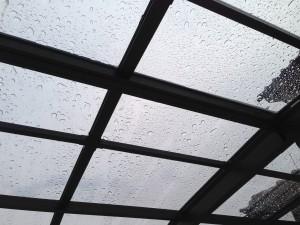ポリカ屋根に交換