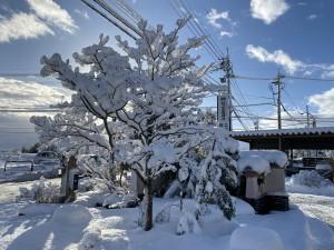 雪景色と年末年始休業のお知らせ